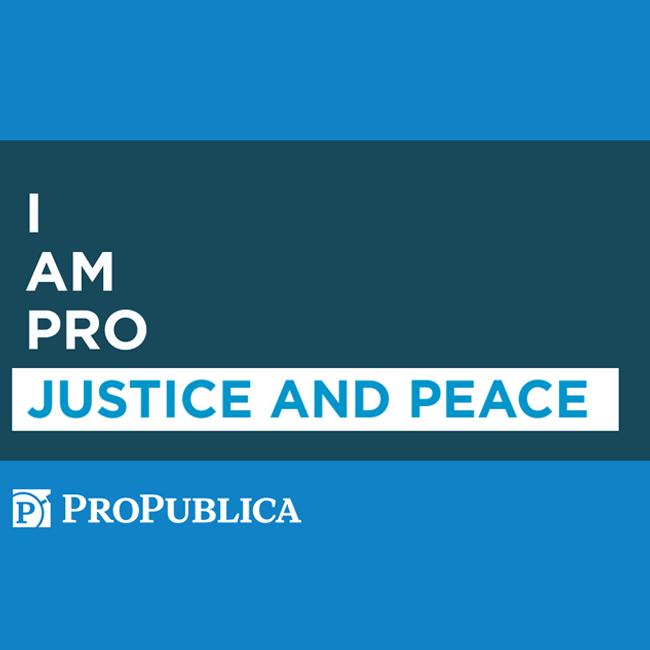 ProPublica Social Media